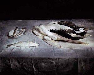 drew_pelican_paper_linen