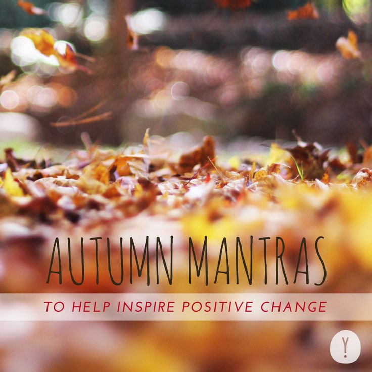 Having a hard time welcoming autumn with open arms? This time of year can bring…
