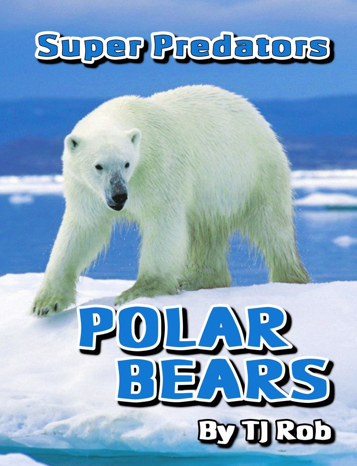 Polar Bears are the largest and most aggressive of Bears. Discover how these giant animals live in the coldest, most extreme place on planet Earth. #polarbears #bears #icebears #kidsbooks