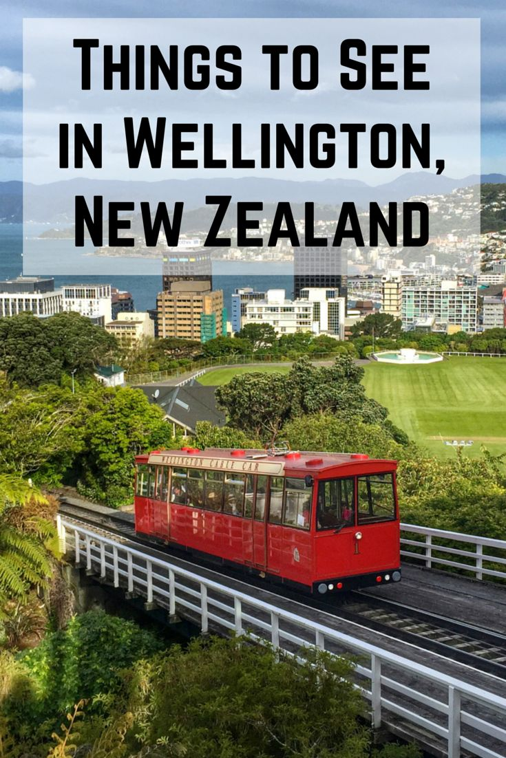 Things to See in Wellington, New Zealand