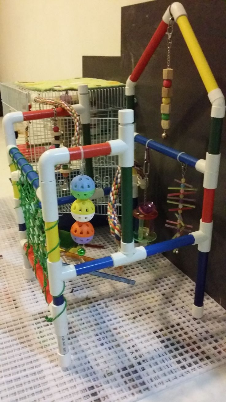 Pvc Playgym Amp Stand Creative Ideas Of Pvc Parrot Playgym