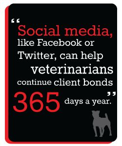 If you're a veterinarian or vet tech, you can use social media to connect with pet parents 365 days a year. Find out how at snoutschool.com