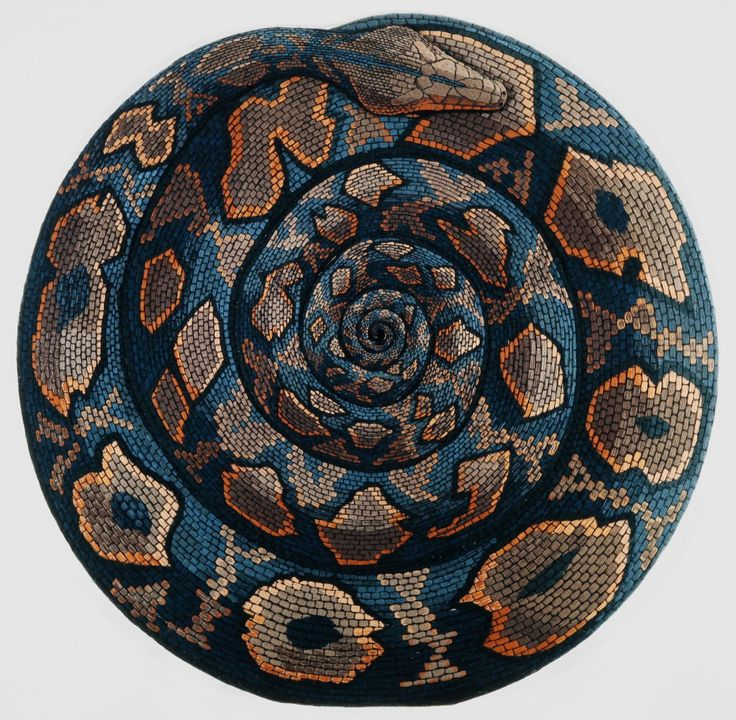 wagga snake mandala - photo#22