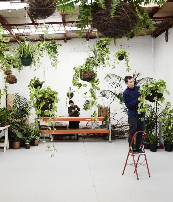 Loose Leaf — floral studio / plant store in Collingwood, Melbourne