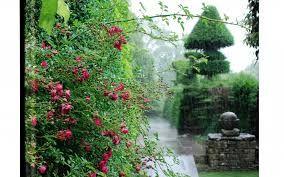 Bildresultat för engelska trädgårdar