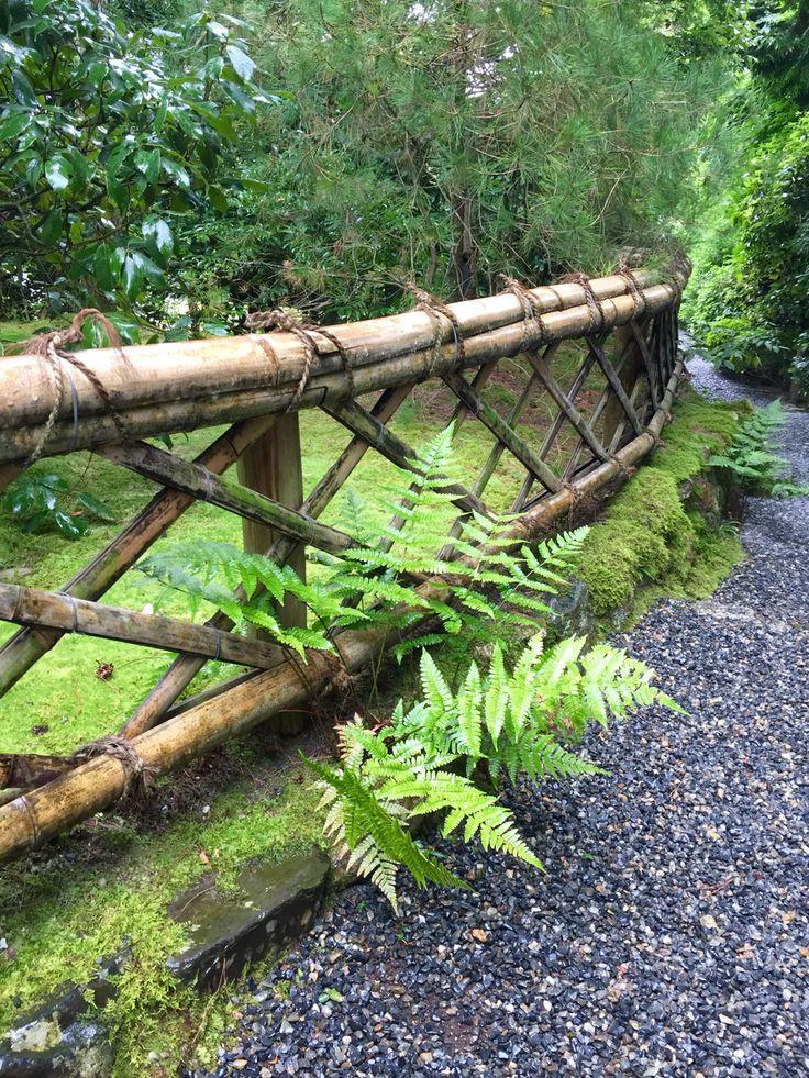 Bamboo railing | Japan