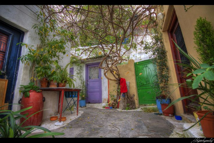 A yard full of colors -