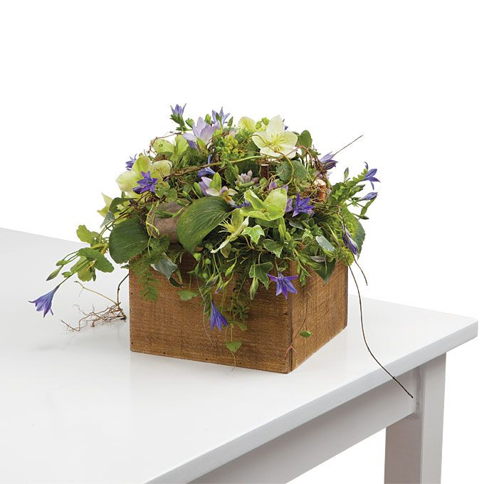 Best flowers in a box images on pinterest floral