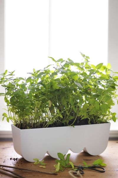 The ÄGGPLANTA Planter From IKEA Can Be Used To Hold Individual Potted  Plants Or To Plant