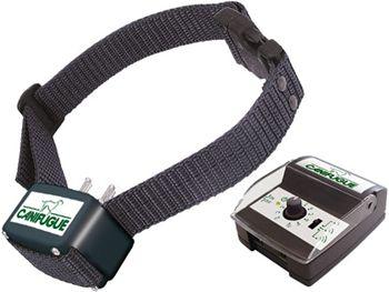 kit de collier anti fugue canifugue - 1 chien - 300m