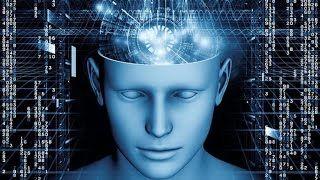 consciousness - YouTube