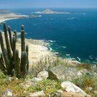 Foto de Chañaral, Chile #travel