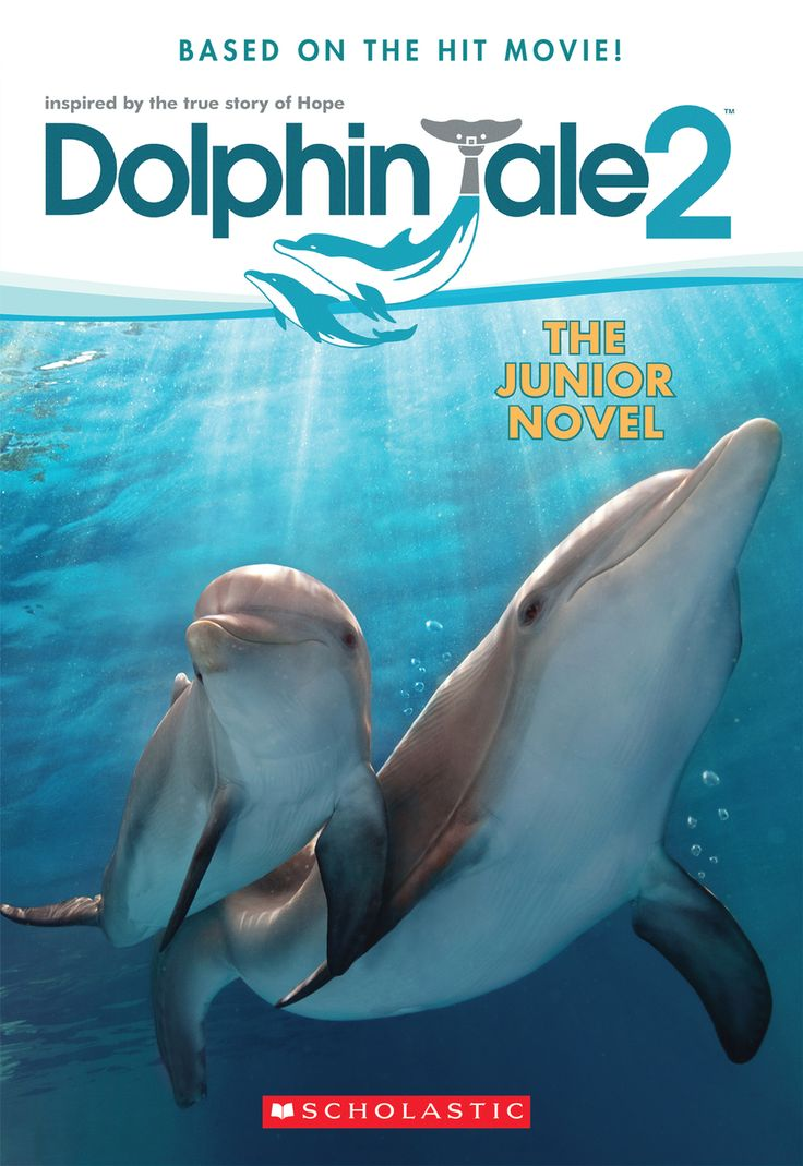 SeeWinter Store - Dolphin Tale 2 Junior Novel, $5.99 (http://cmastore.seewinter.com/dolphin-tale-2-junior-novel/)