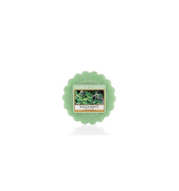 Wild Mint (Wosk)
