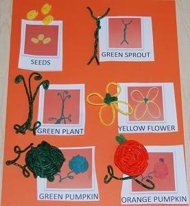 Montessori Fall Activities - Wildflower Ramblings