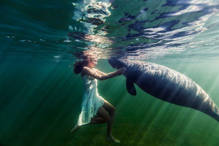 サシャの特徴のひとつが、海の動物たちと仲が良いこと。幼い頃からウミガメやマナティーと遊んできたので、水中の生物たちはみな「友達」なのです。