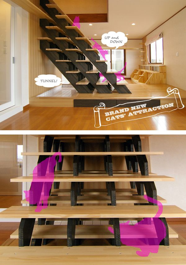 Cat Climb Cat Room, triple staircase that multiple cats can hide out in.
