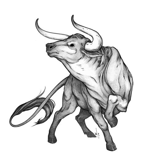 A slightly more feminine ox....thinking of having something similar to this going down my ribs and into a field of flowers on my hip, done in a fractured color/heavy outline style.