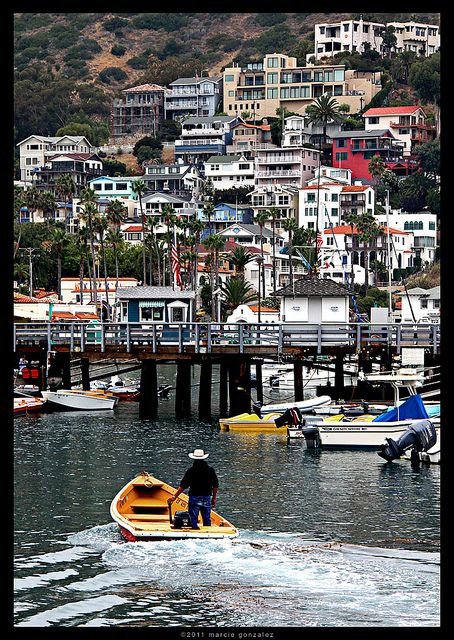 Win a trip to Catalina Island through @PacSun! Ask me how!