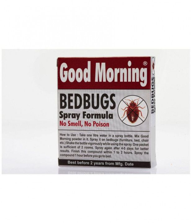 Pin By Hendro Birowo On Modern Design Low Budget Bed Bugs