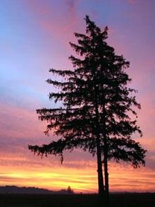 Saugeen Shores Sunset