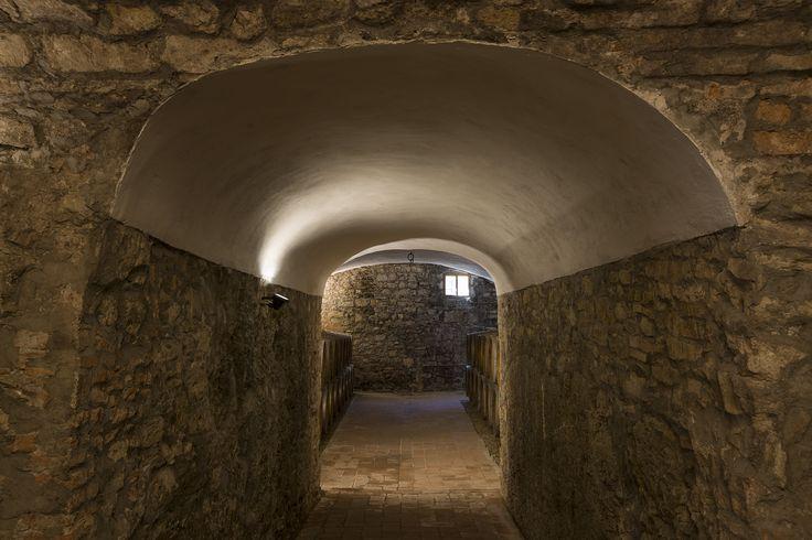 Ancient cellar Castello di Meleto