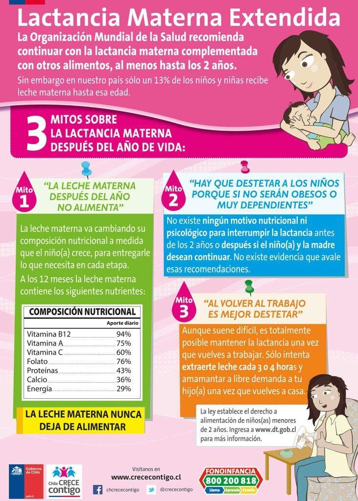 Las 25 mejores ideas sobre lactancia materna en pinterest alimentos para lactancia y aumentar - Alimentos para producir leche materna ...