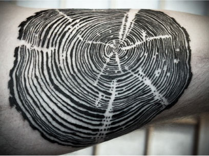 tree ring tattoo | Ink | Pinterest | Trees, Tree rings and ...