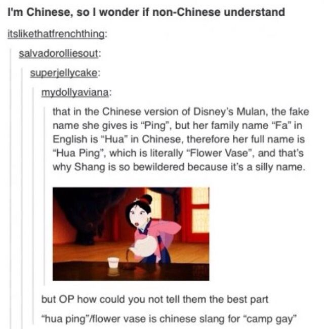 Mulan's name actually means Camp Gay in Chinese Slang!!!<<I like to think of Mulan as gay in my mind soooo