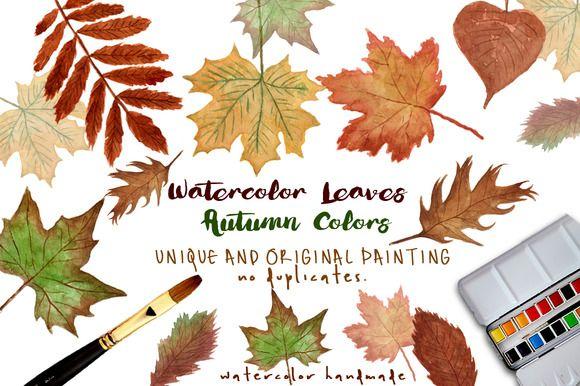 Watercolor Clip Art - Autumn Leaves watercolor illustration by MARAQUELA WATERCOLOR.
