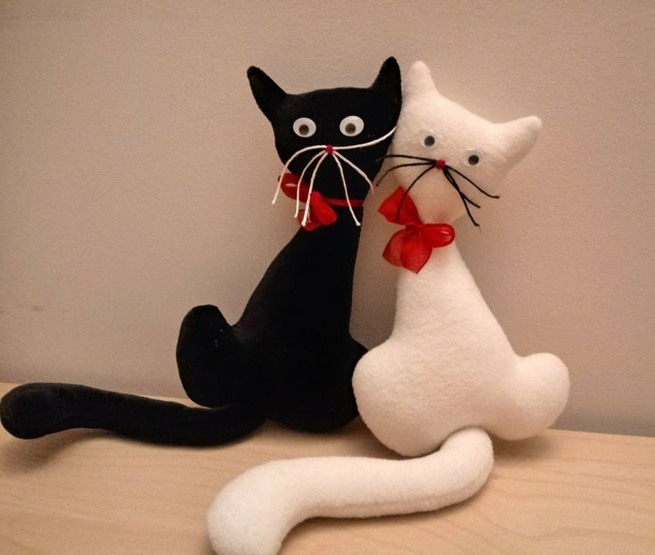 Czarny kot , biały kot...