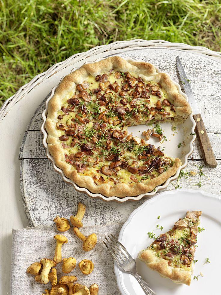 Das Rezept für den Herbst: Eierschwammerl-Quiche mit Prosciutto udn Kresse