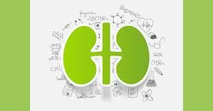 Diabetes, particularly type 2 diabetes, has become so common that diabetic kidney disease (nephropathy) has leaped ahead of high blood pressure as the leading cause of kidney failure in much of the...