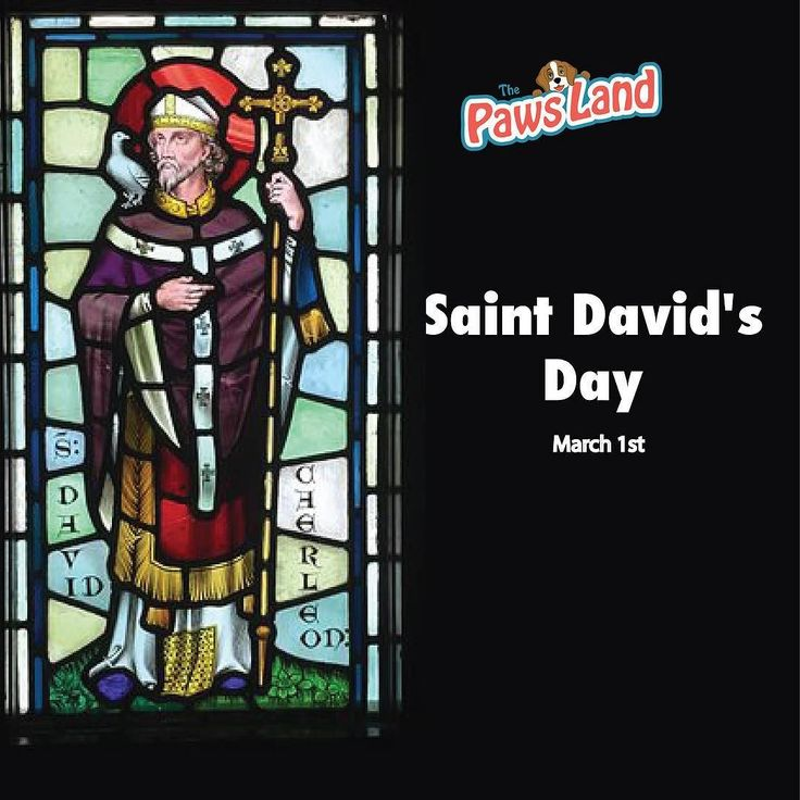 Saint David's Day (Welsh: Dydd Gŵyl Dewi Welsh pronunciation: [dɨːð ɡʊɨl ˈdɛui]) is the feast day of Saint David the patron saint of Wales and falls on 1 March the date of Saint David's death in 589 AD. The feast has been regularly celebrated since the canonisation of David in the 12th century though it is not a national holiday in the UK. #usa #saintdavids #thepawsland #dogs #cats #petboutique #religion