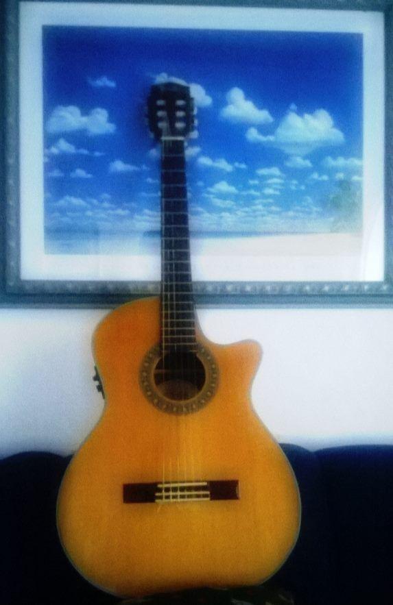 #fender guitar