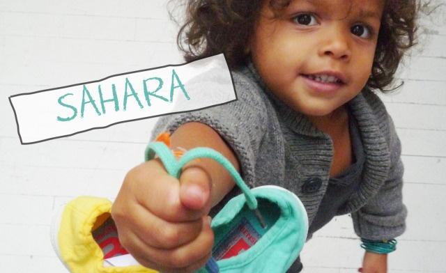 Sahara, bébé Bensimon !