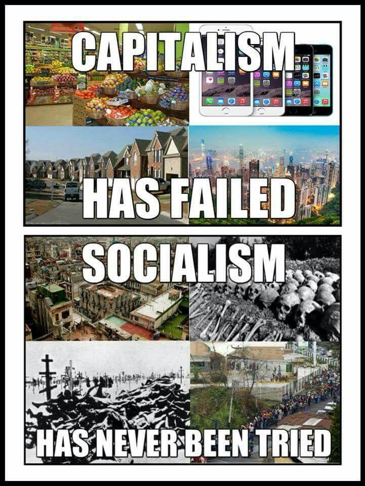 best hmmm images conservative politics  capitalism vs socialism