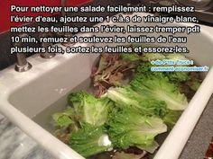 Il est bien plus économique d'acheter une salade entière que de la salade en sachet. Le souci, c'est qu'une salade verte ou frisée, ce n'est pas évident à nettoyer. Surtout s...