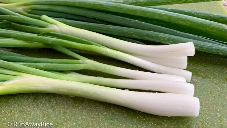 How to freeze green onions scallions freezing onions