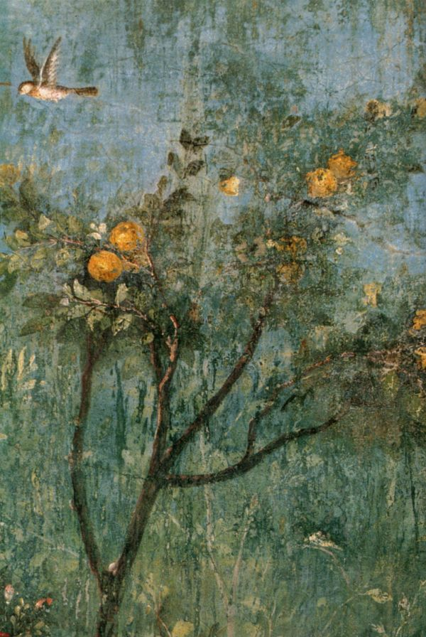 Garden Frescoes Painted On The Walls Of The Villa Di Livia