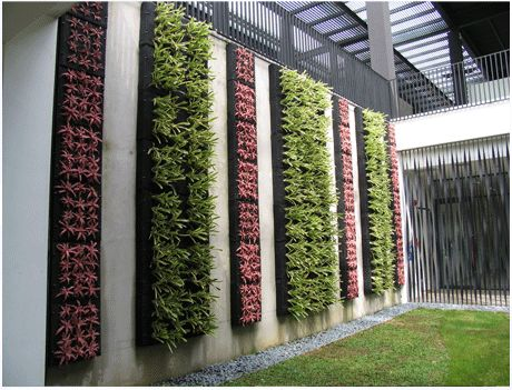 7 Best Images About Greenwall On Pinterest Green Walls