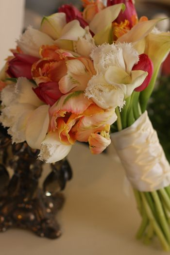 Feathered tulip, parrot tulip, calla lillies http://www.kellysweddingflowers.com/gallery/d/2389-1/KellysFlowers_Parrot%2BTulip%2BBridal%2BBouquet.jpg