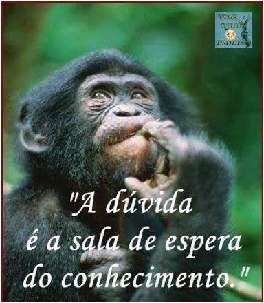 """""""A dúvida é a sala de espera do conhecimento.""""  #gagicrcmedia #dizeres #vida"""