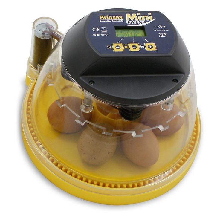 Mini Advance Automatic Egg Incubator