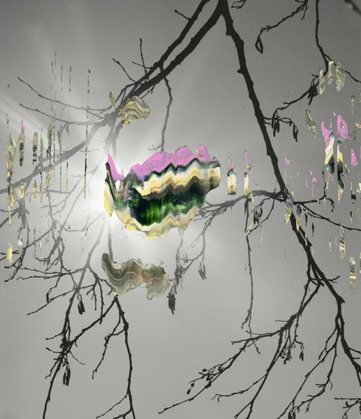 Nanna Hanninen: Strange Halo,  2012.  Digital C-print on Diasec.