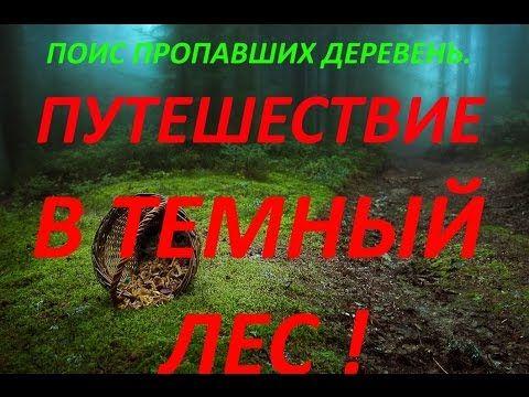 ПУТЕШЕСТВИЕ В ТЕМНЫЙ ЛЕС 2016 год !