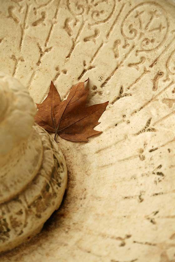 drinking fountain detail and leafBathurst .. more on the blog http://destinationhereandnow.com/2015/04/as-you-walk/  #bathurst #autumn #autumncolour #autumncolor