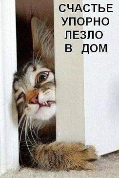 Людмила Бурцева
