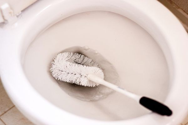 Best 25 Cleaning Toilet Ring Ideas On Pinterest