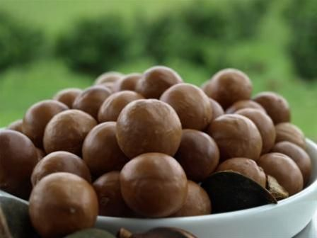 Bellbowra Certified Organic macadamias, from the NSW Mid North Coast.